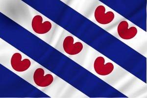 vlag_friesland_rechtformaat_2