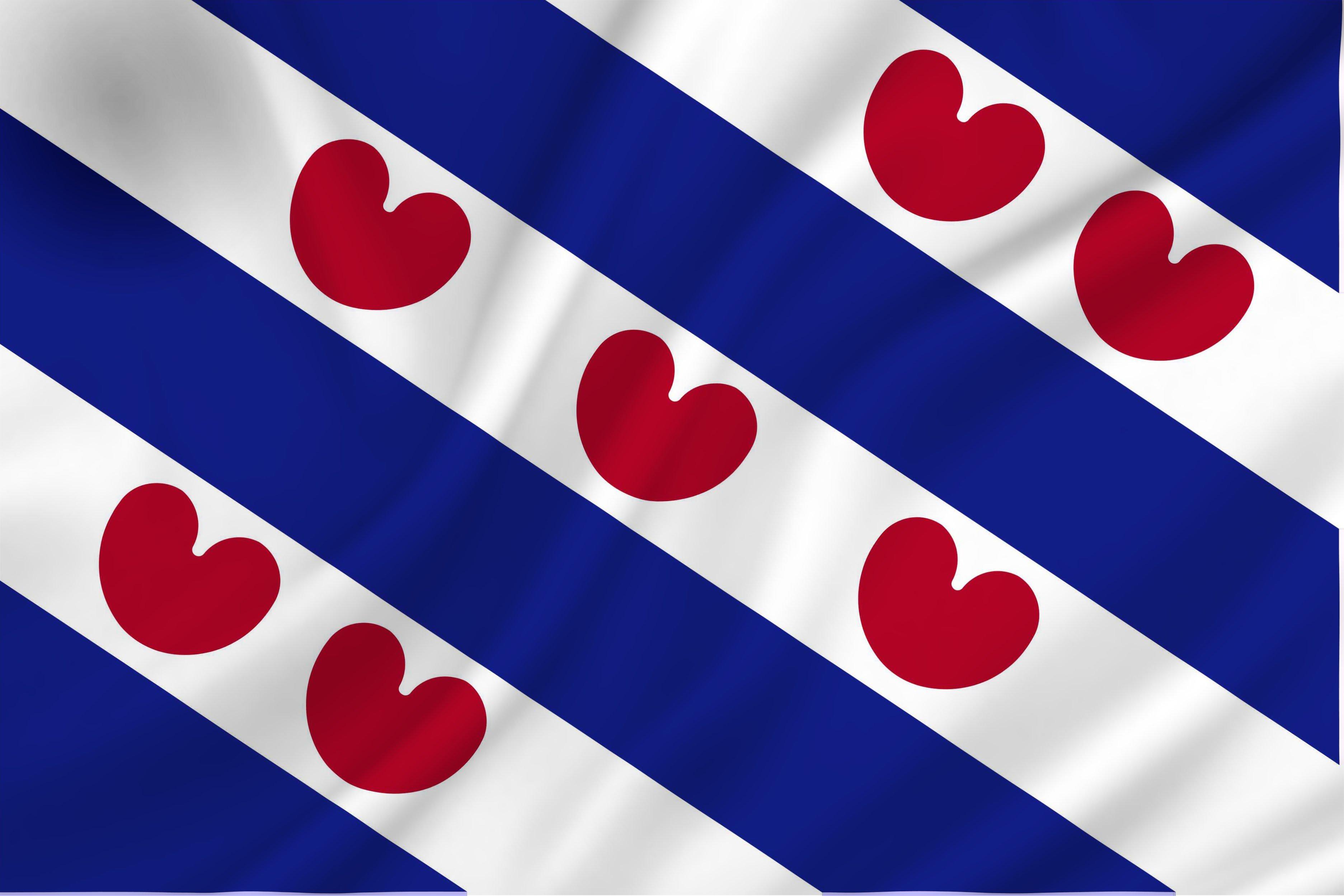 Friesland gaat voor het basisinkomen! - Nederlandstalig ...